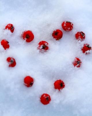 Freezing heart